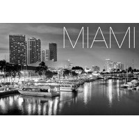 Blendfeel - Miami - 50ml Ready