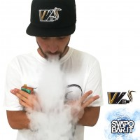 VV - Vape Van Mod - Cappellino Ricamato