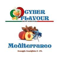 CyberFlavour - Mediterraneo