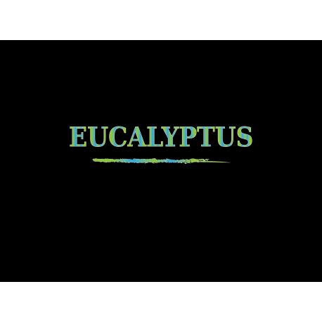 DEA - Eucalyptus - Aroma Concentrato 10ml