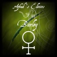 AZHAD'S - PURE Burley